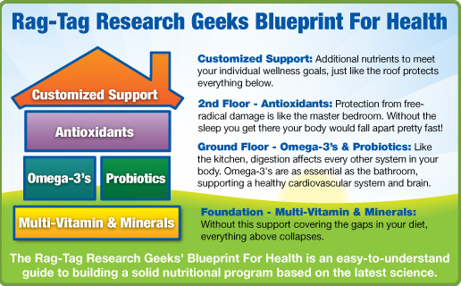 Introducing the rag tag research geeks blueprint for health blueprint for health from malvernweather Images
